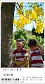 阿勃勒,台南賞花地點公開,初夏最金黃耀眼的綻放:nEO_IMG_20130602 257.jpg