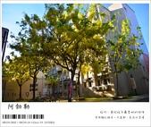 阿勃勒,台南賞花地點公開,初夏最金黃耀眼的綻放:nEO_IMG_20130602 1412.jpg