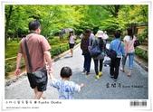 京都 x 大阪 親子遊。金閣寺 世界遺產:nEO_IMG_20120623td 512.jpg