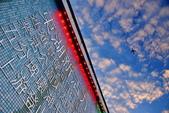 內湖 櫻花 2020:DSC_0904_調整大小.JPG