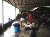 金溪農場3-14-2010:DSC07983.JPG