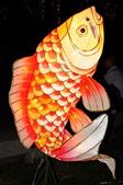 鯉魚燈:DSC_0528_調整大小.JPG