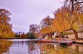 劍橋河畔:DSC_0289_調整大小.JPG