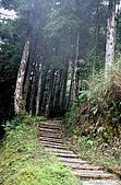 太平山11-5-98:IMG_0575.JPG