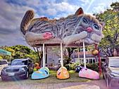 淡水國小的 貓:IMG_20210313_140240_調整大小.jpg