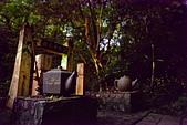 桂花吊橋 螢火蟲之夜:DSC_0095_調整大小.JPG