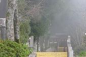 太平山11-5-98:IMG_0633.JPG