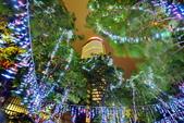 新北聖誕花燈 2017:c_調整大小.JPG