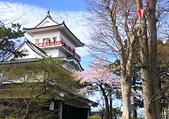 日本櫻花見:7CE970CA-8A86-49C6-A06B-7399B8FC49F4_調整大小.jpg