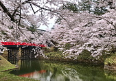 日本櫻花見:7E9D2A46-A9A9-45E9-9CA5-6CD2EA1AA81E_調整大小.jpg