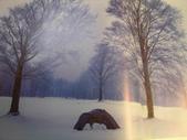 snowpeace露營篇:DSC02493.JPG