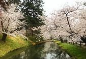 弘前公園 櫻花祭 花見:2D41B185-5F66-4AE3-956E-24B81E7BF82B_調整大小.jpg