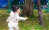 台大杜鵑花盛開: