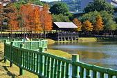 湖岸落羽松 原住民文化主題公園:DSC_0133_調整大小.JPG