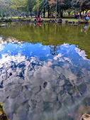 水映 北投 貴子坑:IMG_20210103_155207_調整大小.jpg