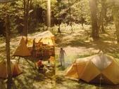 snowpeace露營篇:DSC02496.JPG