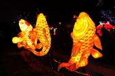鯉魚燈:DSC_0531_調整大小.JPG