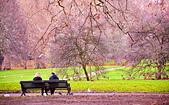 英國 白金漢宮 公園:DSC_0071_調整大小.JPG