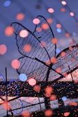 光復橋 河邊 蝴蝶公園:DSC_0221_調整大小.JPG