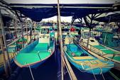 安平小漁港:DSC_4676_調整大小.JPG