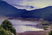 槭紅太平山:DSC_2305_調整大小.JPG