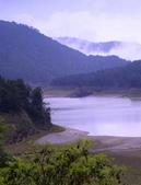 槭紅太平山:DSC_2326_調整大小.JPG