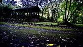 華梵大學 螢火蟲之夜:DSC_0126s_調整大小.jpg