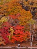 中禪寺湖 楓景:DSC_0261_調整大小.JPG