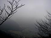 竹子湖12-30:DSC01722.JPG