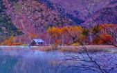 楓姿綽約  湯之湖:DSC_0052z_調整大小.jpg