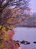 雨中 湯湖:DSC_0726_調整大小.JPG