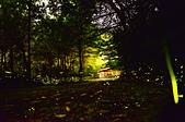 華梵大學 螢火蟲之夜:DSC_0158_調整大小.JPG