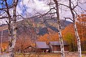 三本松茶屋(Sanbonmatsu chaya Ecotourism Center):DSC_0474_調整大小.JPG