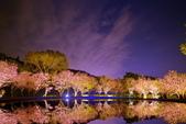 夜幕 陽明山噴泉 賞:DSC_0672_調整大小.JPG