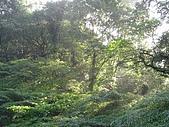 景觀-平湖露營埸98-12-13:DSC06557.JPG