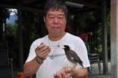6-20香杉農場生態-1:_DSC0780.JPG