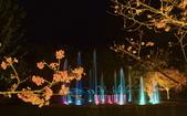 夜幕 陽明山噴泉 賞:DSC_0697_調整大小.JPG