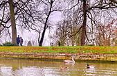 劍橋河畔:DSC_0317_調整大小.JPG
