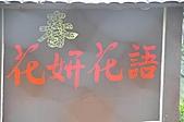 陽明山花季雨中:_DSC0218.JPG