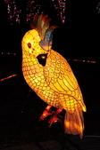 鯉魚燈:DSC_0534_調整大小.JPG