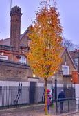 倫敦市集印象:DSC_0588_調整大小.JPG