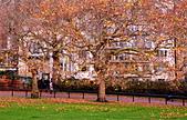 英國 白金漢宮 公園:DSC_0193_調整大小.JPG