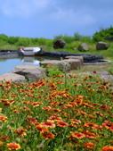 澎湖 二坎聚落:二崁聚落的居民不只是在建築和飲食上維持傳統的風情,走在二崁聚落中,隨處都可以見到田園風貌等鄉村景象,你甚