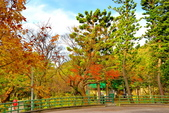 陽明山 前山公園:
