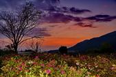 夜幕 陽明山噴泉 賞:DSC_0568_調整大小.JPG