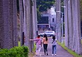士林官邸 落羽松:DSC_0252_調整大小.JPG