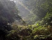 風景-平湖12-18:DSC01564.JPG