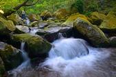 青山瀑布 2016: