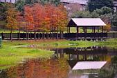 2019 原住民文化公園:DSC_0113_調整大小.JPG