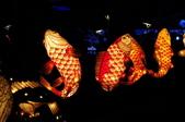 鯉魚燈:DSC_0535_調整大小.JPG